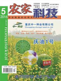 农家科技期刊