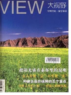 大视野杂志