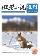 微型小说选刊