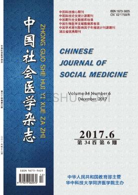 中国社会医学论文