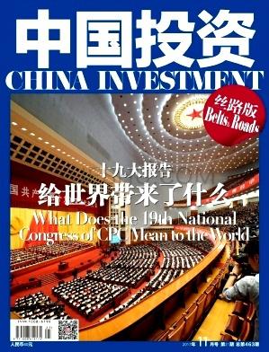 中国投资论文