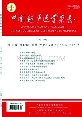 中国超声医学论文