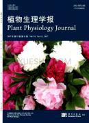 植物生理学报