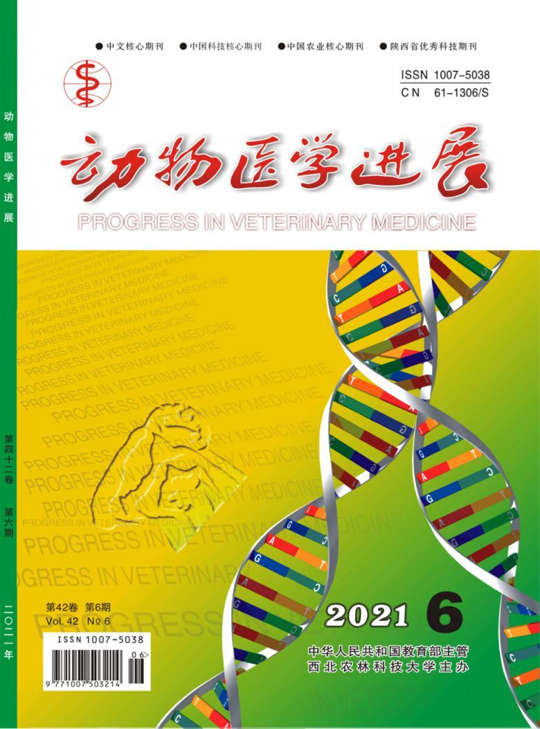 动物医学进展