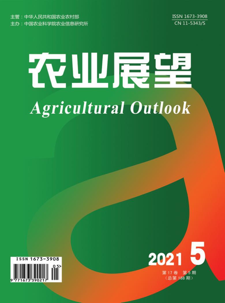 农业展望论文