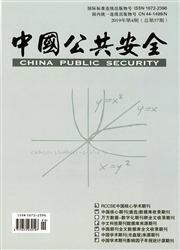 中国公共安全
