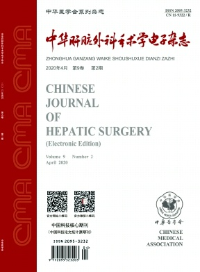 中华肝脏外科手术学电子