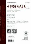 中华医学超声
