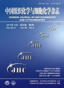 中国组织化学与细胞化学