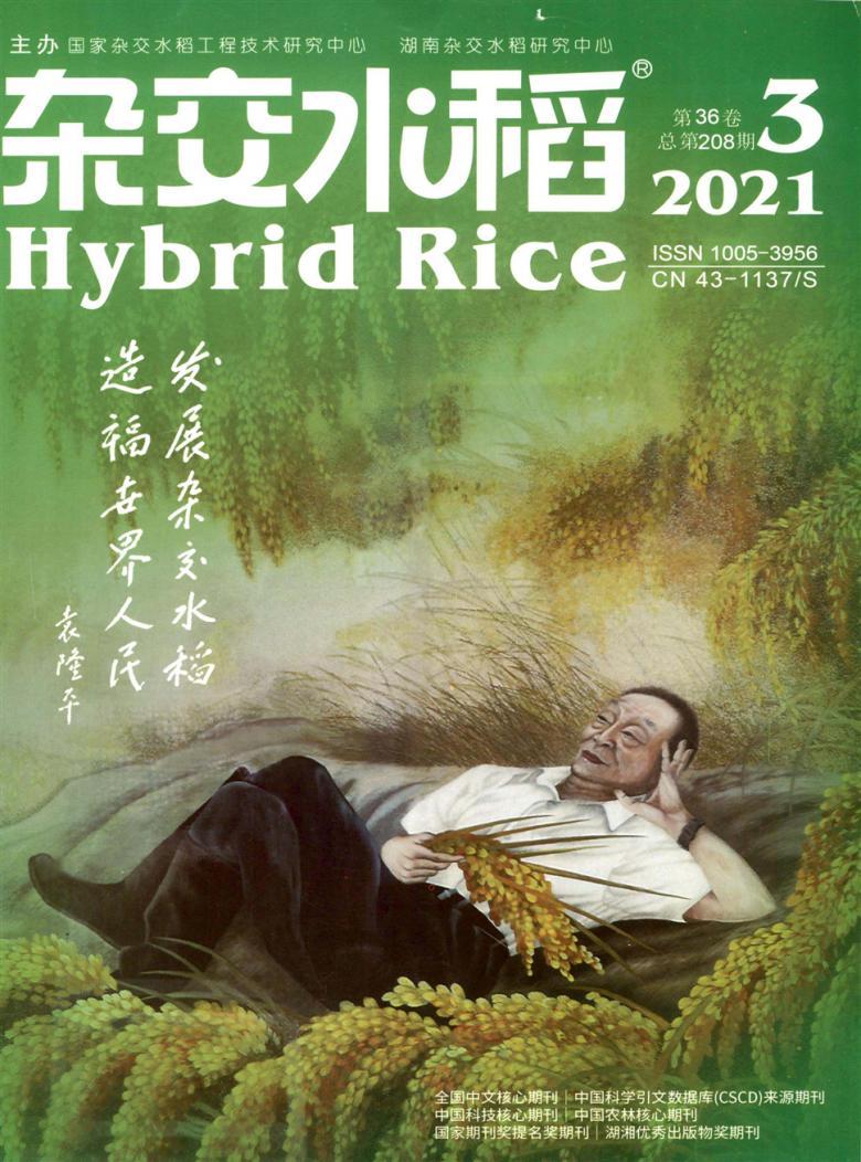 杂交水稻杂志社