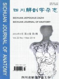 四川解剖学期刊