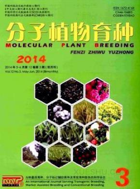 分子植物育种杂志