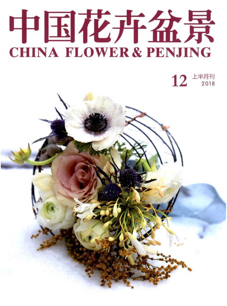 中国花卉盆景