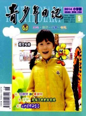 青少年日记杂志