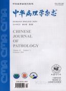 中华病理学