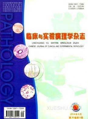 临床与实验病理学杂志