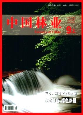 中国林业论文