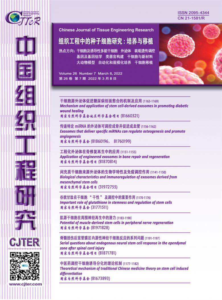 中国组织工程研究杂志社